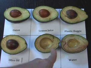 Best way to save an Avocado