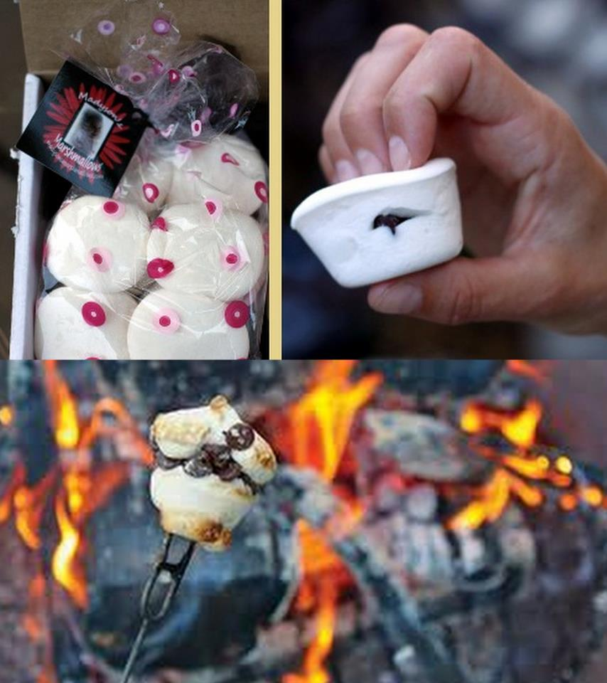 Stuff Marshmallows BEFORE you roast em