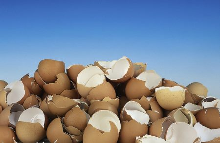 Old egg shells help the garden